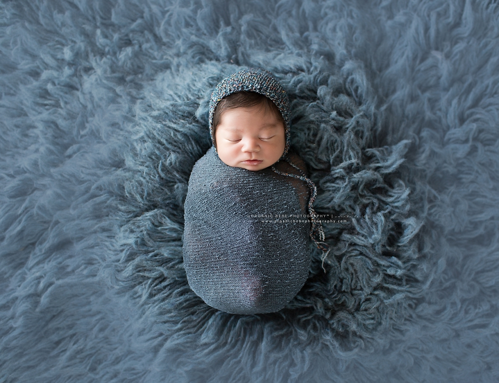newborn baby boy session denver colorado, organic bebe photography