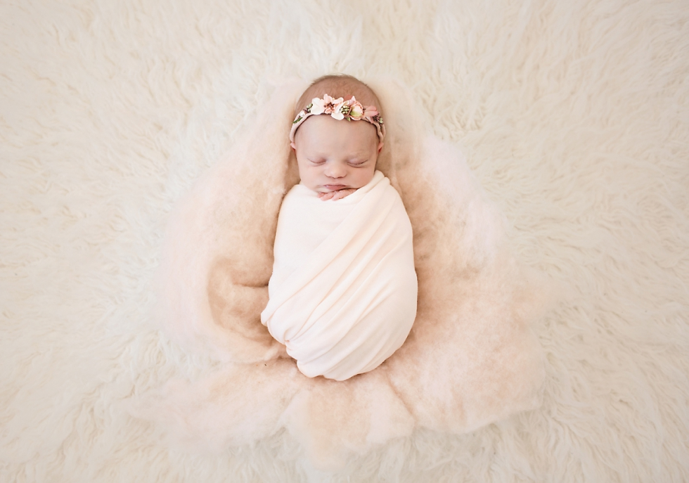 denver newborn photography session